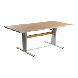 ADA Group Therapy Table w/Power Adjustment