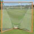 Practice Lacrosse Goal w/ Net