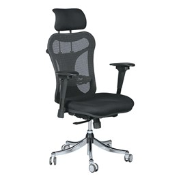 Ergo Ex Ergonomic Office Chair