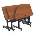 Adjustable-Height Flipper Training Table