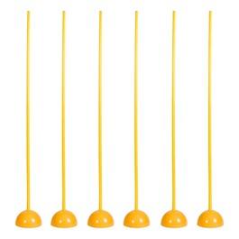 Coaching Sticks w/ Bases - Set of 6