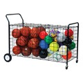Double-Sided Ball Cart