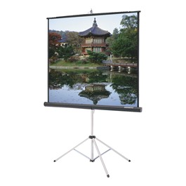 Picture King Tripod Screen w/ Keystone Eliminator