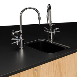 Forward Vision II Four-Student Workstation w/ Drop-In Sink - Compact - Sink