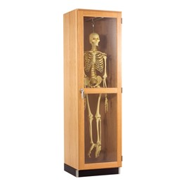 Skeleton Storage Cabinet - Hanging