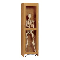 Skeleton Storage Cabinet - Roll-In