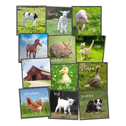 Barn Animals Carpet Squares - Set of 24