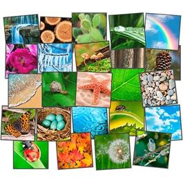 Nature\'s Beauty Carpet Squares - Set of 24
