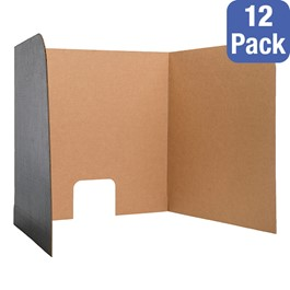 Package of 12 Computer Lab Privacy Screens