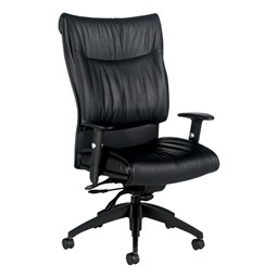Softcurve Executive Office Chair - High Back w/ Adjustable Arms - Black