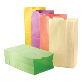 Colorful Paper Craft Bags - Pack of 100