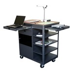 Vizion Multimedia Cart
