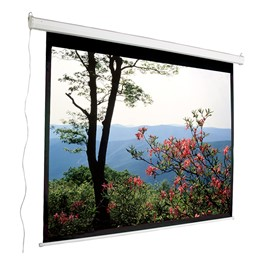 "Motorized Projection Screen - Full Screen Format (96"" W x 73\"" H)"