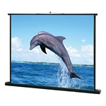 Portable Pull-Up Projection Screen