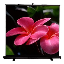 "Portable Pull-Up Projection Screen (48"" W x 36\"" H)"