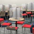 Table Screens & Table Dividers