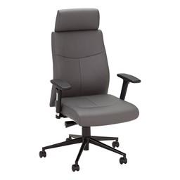 Ergonomic Multi-Adjustable Executive Chair - Gray