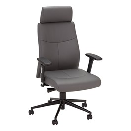 Ergonomic Multi-Adjustable Executive Chair - Gray