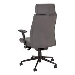 Ergonomic Multi-Adjustable Executive Chair - Gray - Back