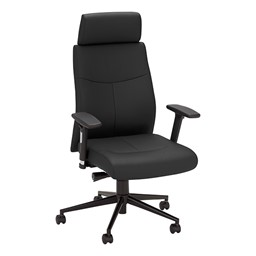 Ergonomic Multi-Adjustable Executive Chair - Black