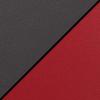 Black Seat/Red Back