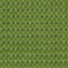 Apple Green Fabric Color