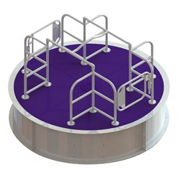 Wheelchair Accessible Merry Go Round - Purple Deck w/ White Rails