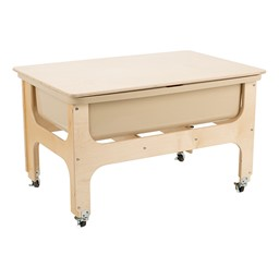 Sand & Water Table w/ Lid
