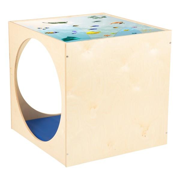 Acrylic Top Ocean Play House Cube