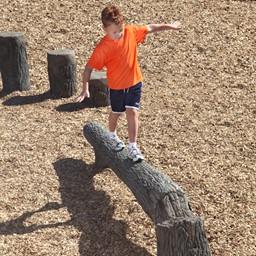 Fallen Tree Balance Beam (8' L)