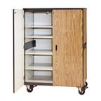 2501 Mobile Cabinet