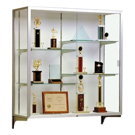 Champion 2040 Series Display Case - Shown w/ satin aluminum frame & white back