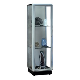 Prominence Series Display Case w/ Lights