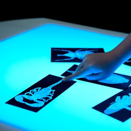 Brilliant Light Table - (Slides not included)