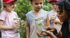 Building Your Outdoor Classroom